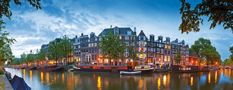 Museo van gogh di amsterdam il giallo dei girasoli - Agenzie immobiliari amsterdam ...